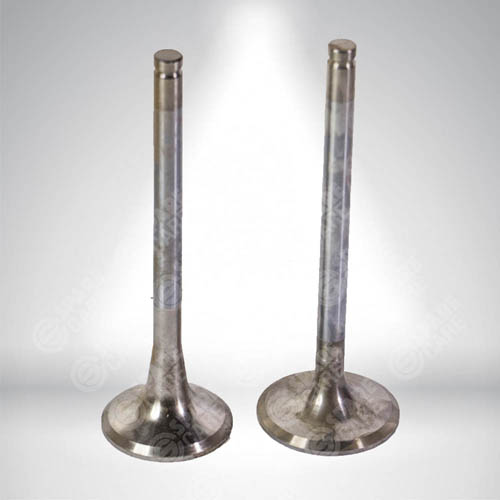 Intake & Exhaust Valves